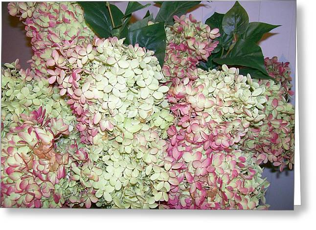 Greeting Card featuring the digital art Pink Hydrangeas by Barbara S Nickerson