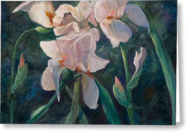 Pink Iris Greeting Card by Jimmie Trotter
