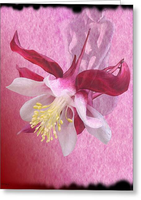 Floral Digital Art Digital Art Digital Art Greeting Cards - Pink Lady Greeting Card by Torie Tiffany