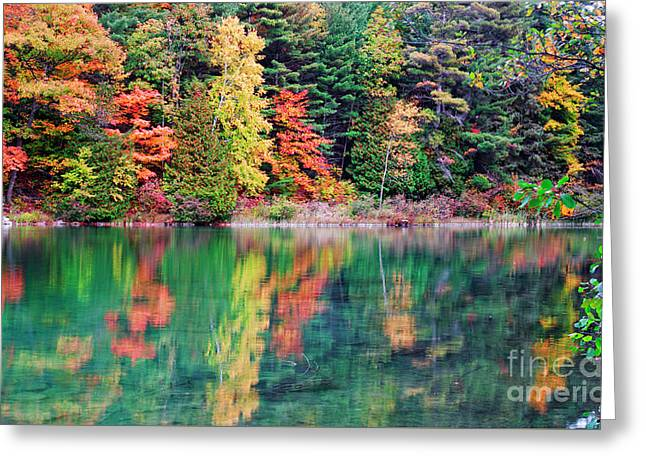 Pink Lake Fall Color Reflections Greeting Card by Charline Xia