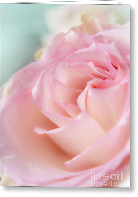 Pink Light Greeting Card by Irina Effa