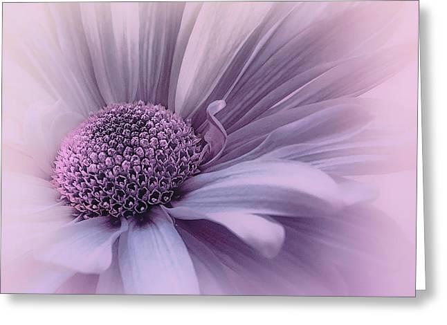 Greeting Card featuring the photograph Pink Mist by Darlene Kwiatkowski