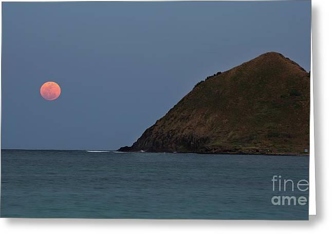 Pink Moon And Moku Iki Greeting Card