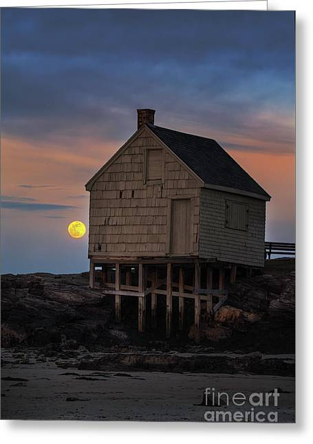 Pink Moon At Willard Beach Greeting Card by Scott Thorp