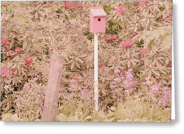 Greeting Card featuring the photograph Pink Nesting Box by Bonnie Bruno