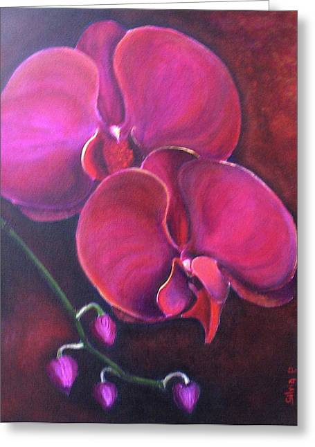 Pink Orchid Greeting Card by Silvia Philippsohn
