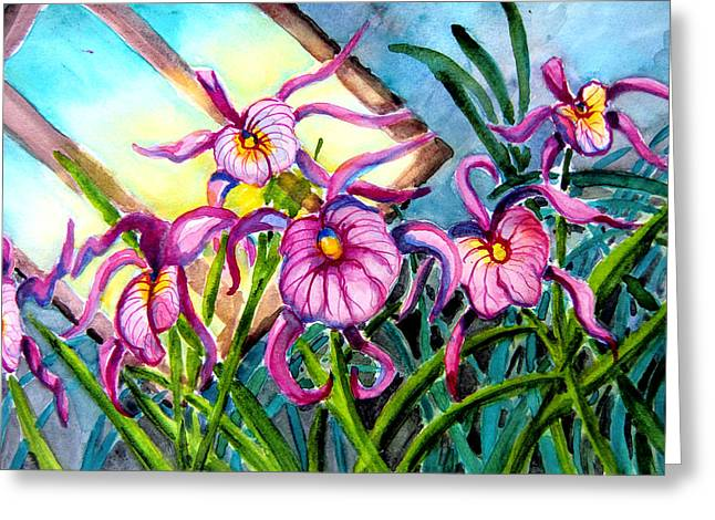 Pink Orchids Under Skylight Greeting Card by Helen Kern