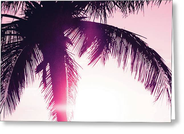 Greeting Card featuring the photograph Pink Palm Tree Silhouettes Kihei Tropical Nights by Sharon Mau