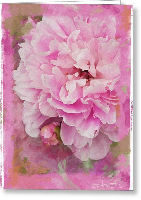 Pink Peony 2 Greeting Card