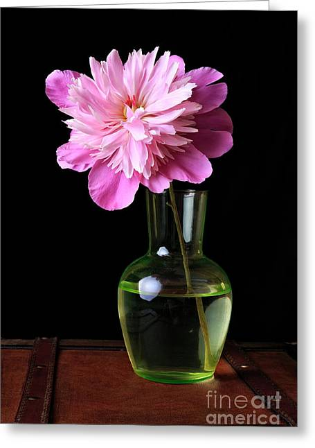 Pink Peony Flower In Vase Greeting Card