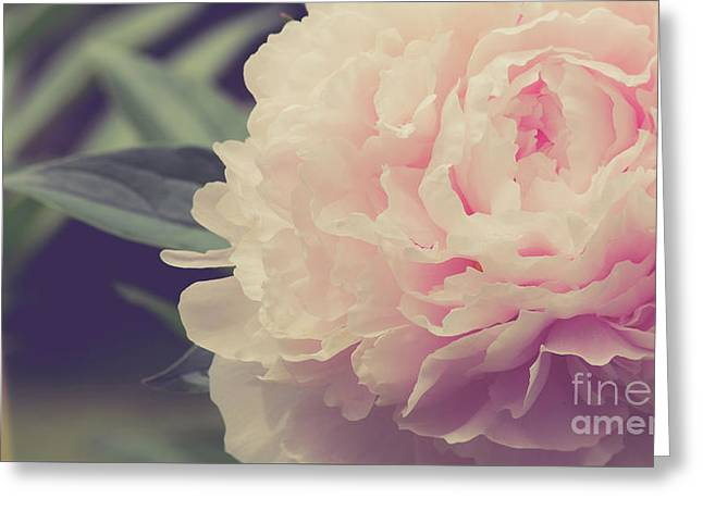 Greeting Card featuring the photograph Pink Peony Vintage Style by Edward Fielding