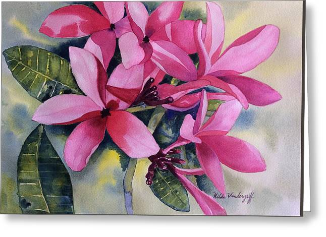 Pink Plumeria Flowers Greeting Card
