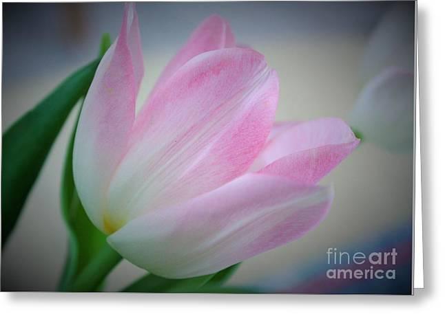 Pink Poetry Greeting Card