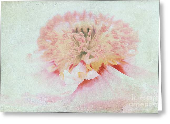 Pink Poppy Greeting Card by Angela Doelling AD DESIGN Photo and PhotoArt