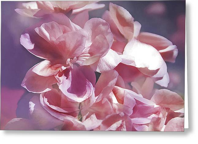 Greeting Card featuring the photograph Pink Punch by Elaine Manley