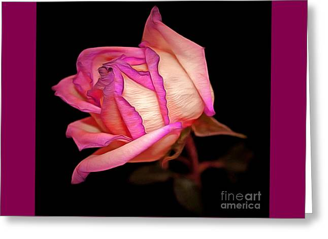 Pink Pursuit Greeting Card