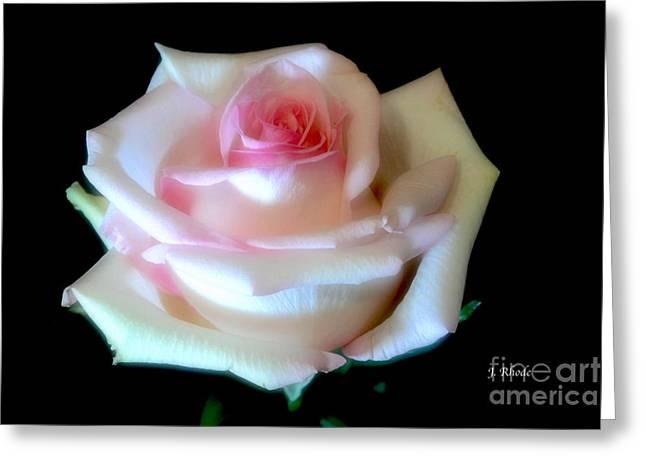 Pink Rose Bud Greeting Card by Jeannie Rhode