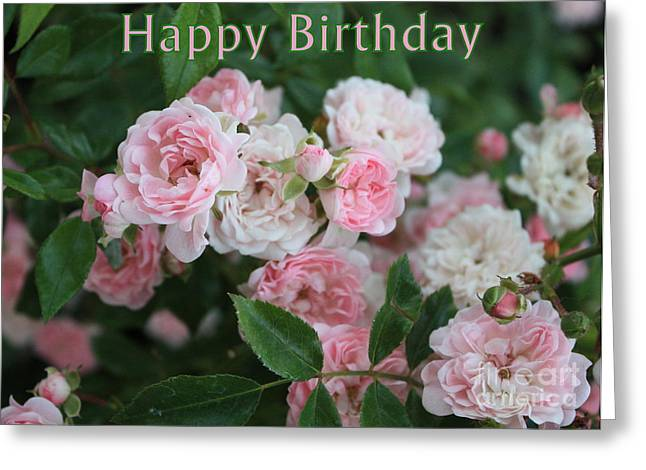 Pink Roses Birthday Card Greeting Card by Carol Groenen