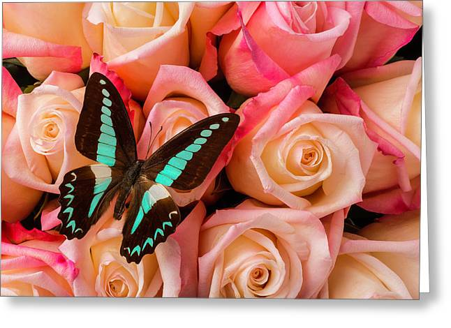 Pink Roses Blue Black Butterfly Greeting Card