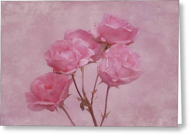 Pink Roses Greeting Card by Sandy Keeton