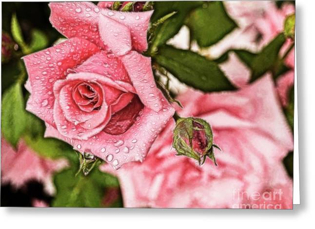 Pink Serenity Greeting Card