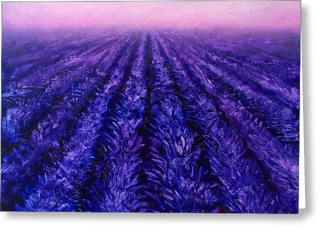 Pink Skies - Lavender Fields Greeting Card