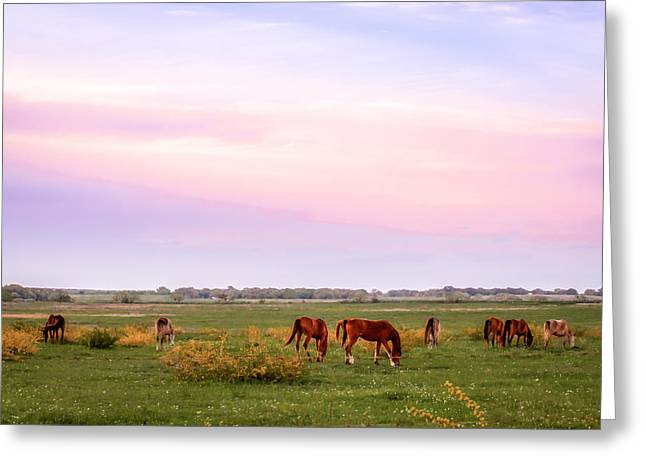 Greeting Card featuring the photograph Pink Sky Night by Melinda Ledsome