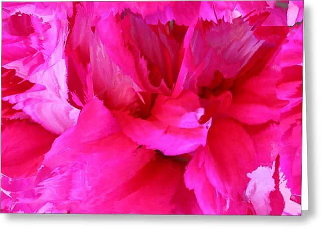 Pink Splash Greeting Card