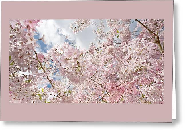 Pink Spring Greeting Card by Daniel Furon