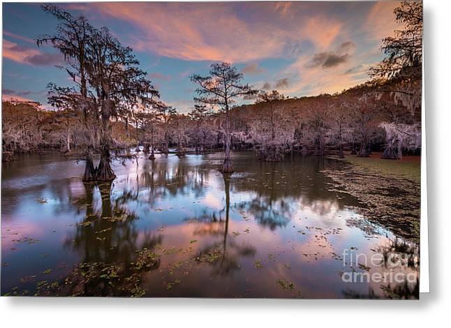 Pink Sunrise At Caddo Lake Greeting Card