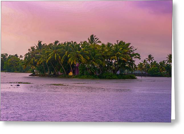 Pink Sunset Over Tropical Coconut Island At Backwaters Of Kerala, India Greeting Card