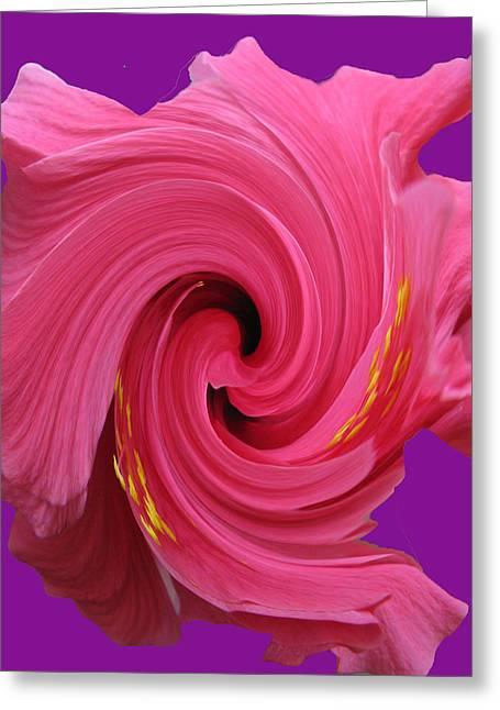 Pink Swirl Hibiscus Flower Greeting Card