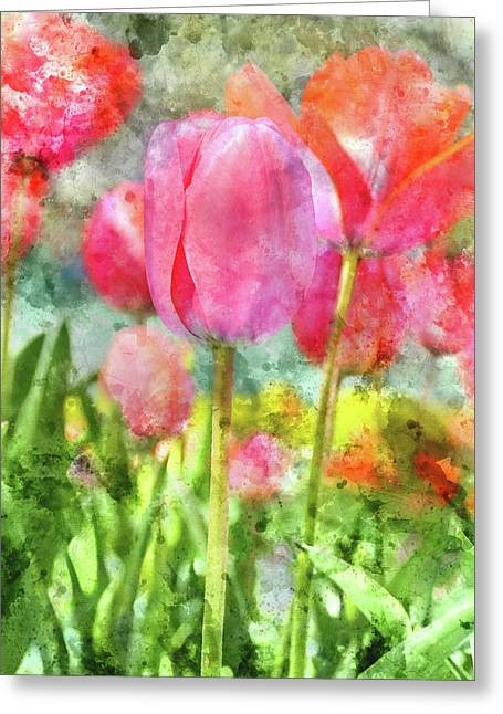 Pink Tulip In The Garden Greeting Card