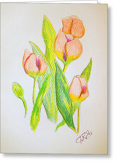 Greeting Card featuring the drawing Pink Tulips by J R Seymour