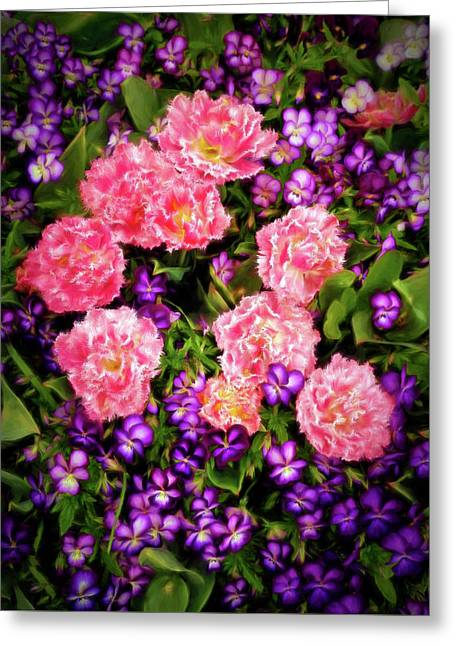 Greeting Card featuring the photograph Pink Tulips With Purple Flowers by James Steele