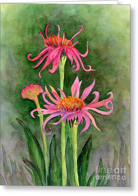 Pink Tutus - Coneflowers Greeting Card by Amy Kirkpatrick