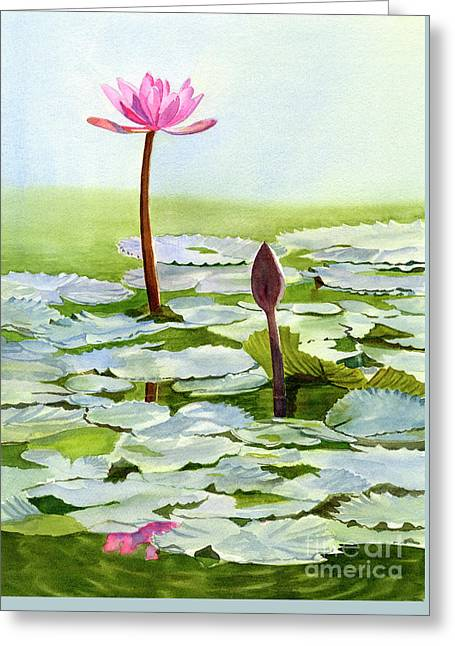 Pink Water Lily Blossom With Bud Greeting Card by Sharon Freeman