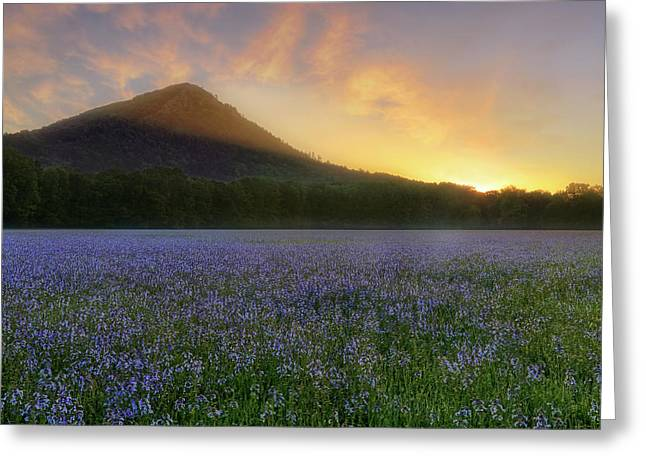 Pinnacle Mountain Sunrise - Arkansas - State Park Greeting Card by Jason Politte