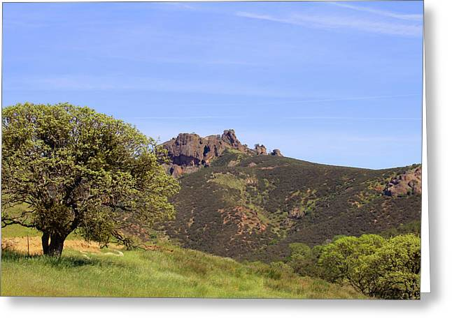 Greeting Card featuring the photograph Pinnacles Vista by Art Block Collections