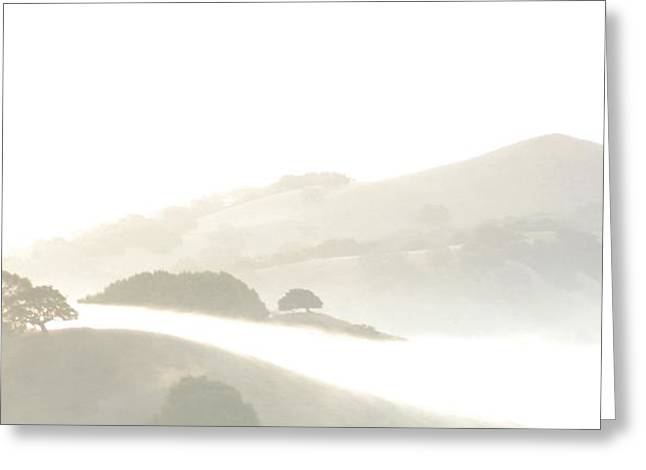 Pinole Valley Morning Mist Greeting Card