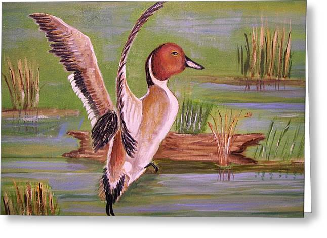 Pintail Duck II Greeting Card