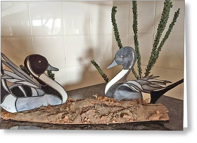 Pintail Ducks Greeting Card
