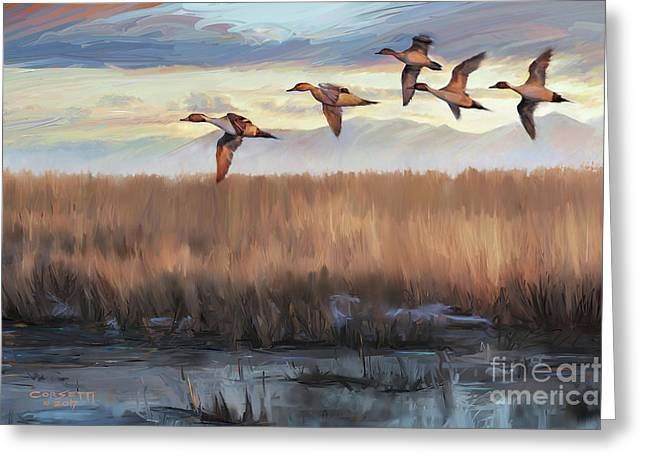 Pintail Fly By Greeting Card