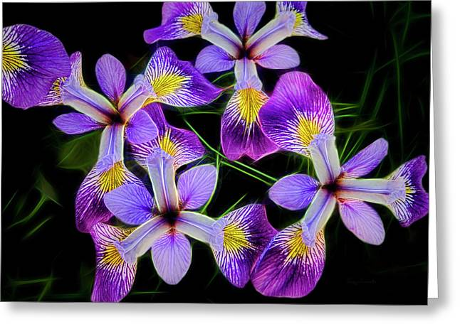 Greeting Card featuring the photograph Pinwheel Purple Iris Glow by Penny Lisowski