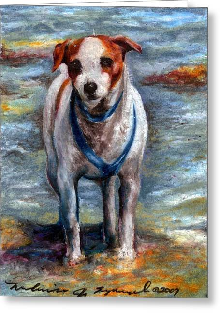 Piper On The Beach Greeting Card by Melissa J Szymanski