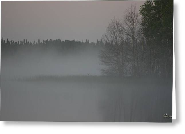 Piprell Lake 4 Am Mist Greeting Card by Andrea Lawrence