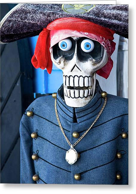 Charlotte Gallery Greeting Cards - Pirate Greeting Card by Diego Pagani
