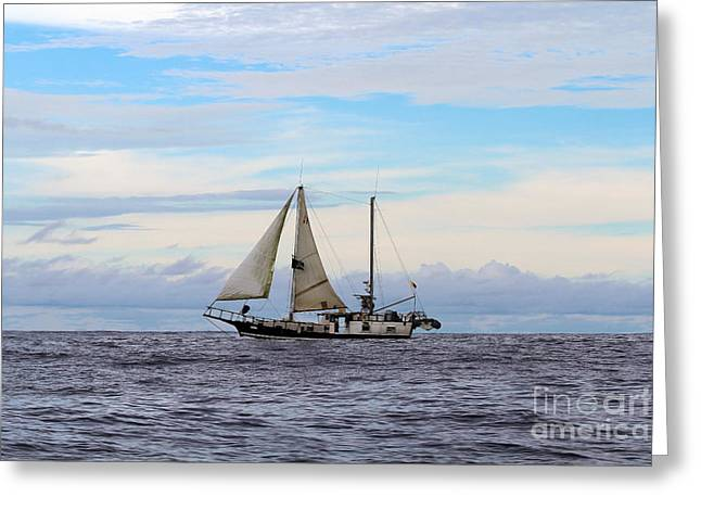 Pirate Ship In The Galapagos Islands Greeting Card