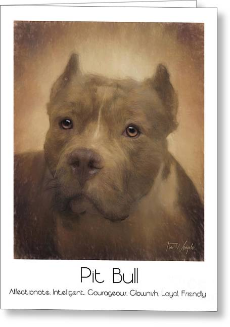 Pit Bull Poster Greeting Card by Tim Wemple