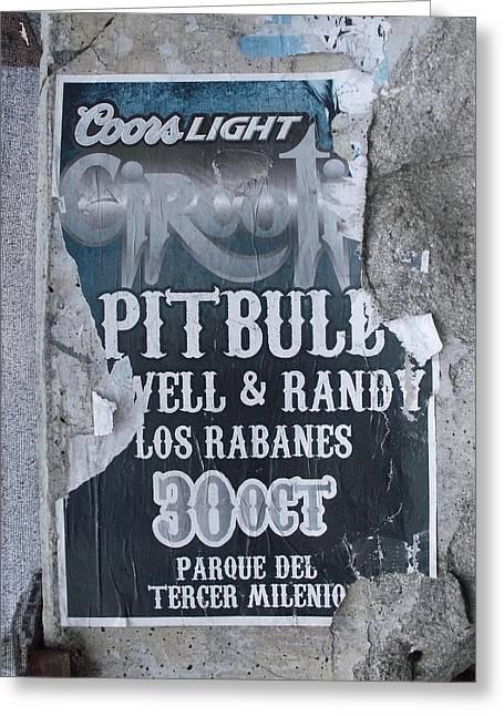 Pitbull Greeting Card by Anna Villarreal Garbis